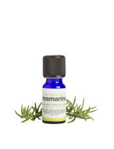 Olio essenziale di rosmarino BIO - La Saponaria